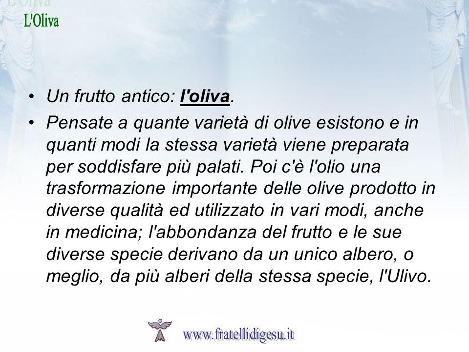 Un frutto antico: l'oliva. Pensate a quante varietà di olive esistono e in quanti modi la stessa varietà viene preparata per soddisfare più palati. Po