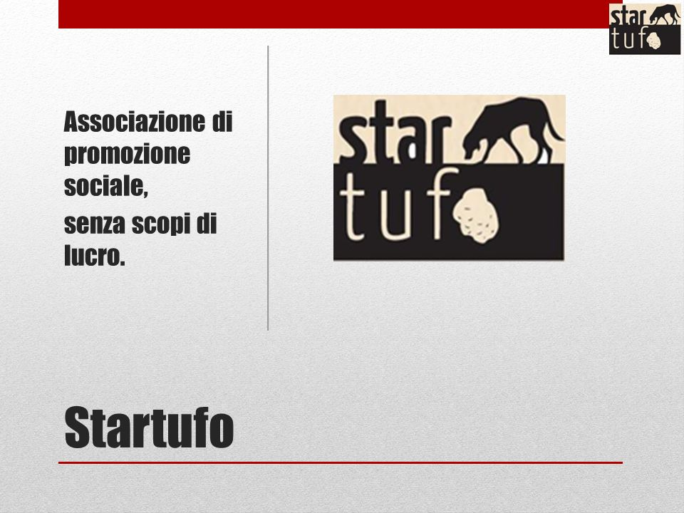 Startufo Associazione di promozione sociale, senza scopi di lucro.