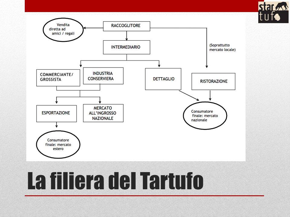 La filiera del Tartufo
