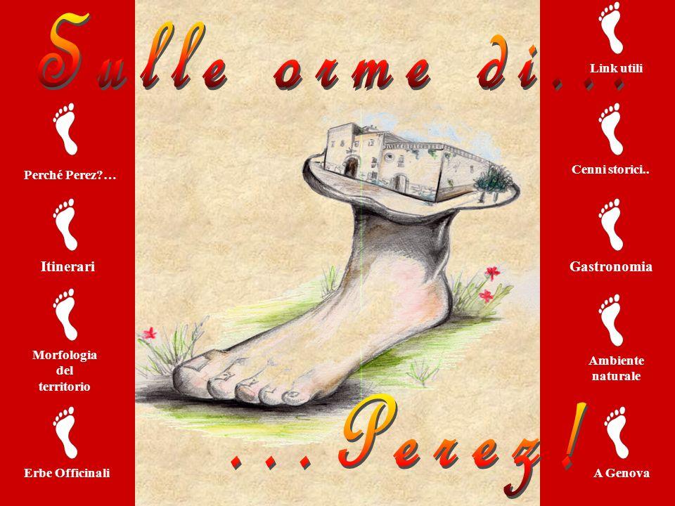 Itinerari Perché Perez?… Morfologia del territorio Gastronomia Cenni storici.. Ambiente naturale Link utili Erbe OfficinaliA Genova