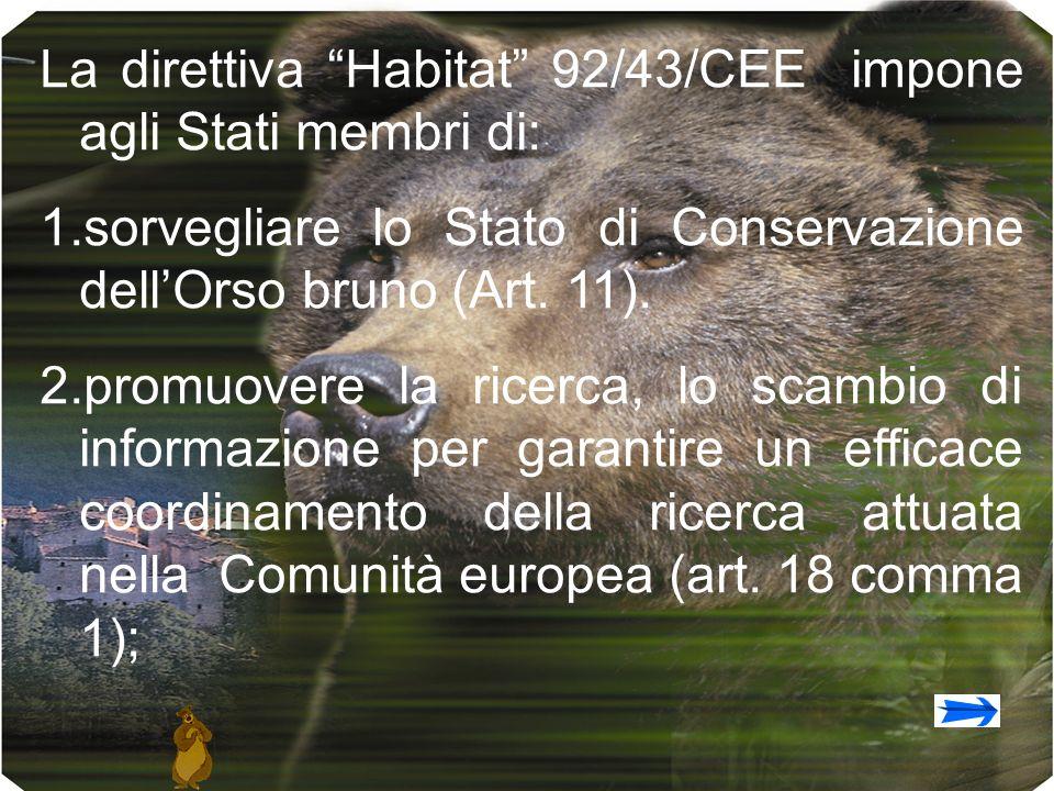 La direttiva Habitat 92/43/CEE impone agli Stati membri di: 1.sorvegliare lo Stato di Conservazione dellOrso bruno (Art. 11). 2.promuovere la ricerca,