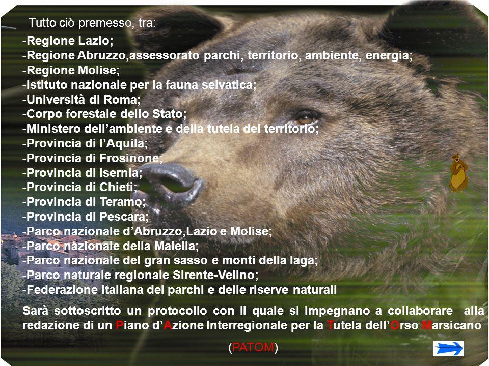 Tutto ciò premesso, tra: -R-Regione Lazio; -R-Regione Abruzzo,assessorato parchi, territorio, ambiente, energia; -R-Regione Molise; -I-Istituto nazion