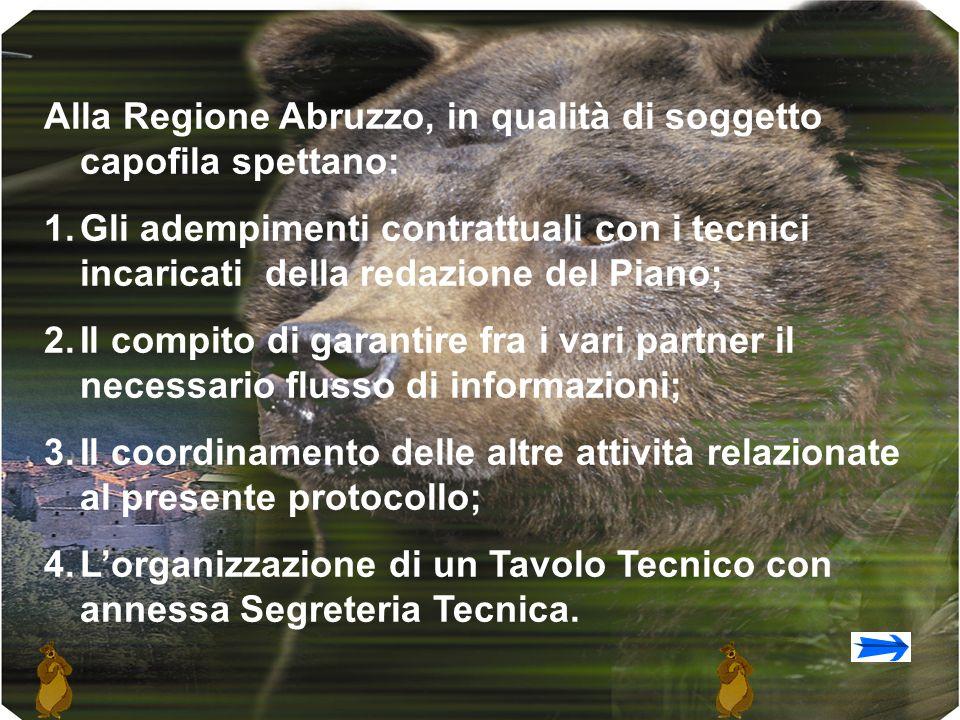 Alla Regione Abruzzo, in qualità di soggetto capofila spettano: 1.Gli adempimenti contrattuali con i tecnici incaricati della redazione del Piano; 2.Il compito di garantire fra i vari partner il necessario flusso di informazioni; 3.Il coordinamento delle altre attività relazionate al presente protocollo; 4.Lorganizzazione di un Tavolo Tecnico con annessa Segreteria Tecnica.