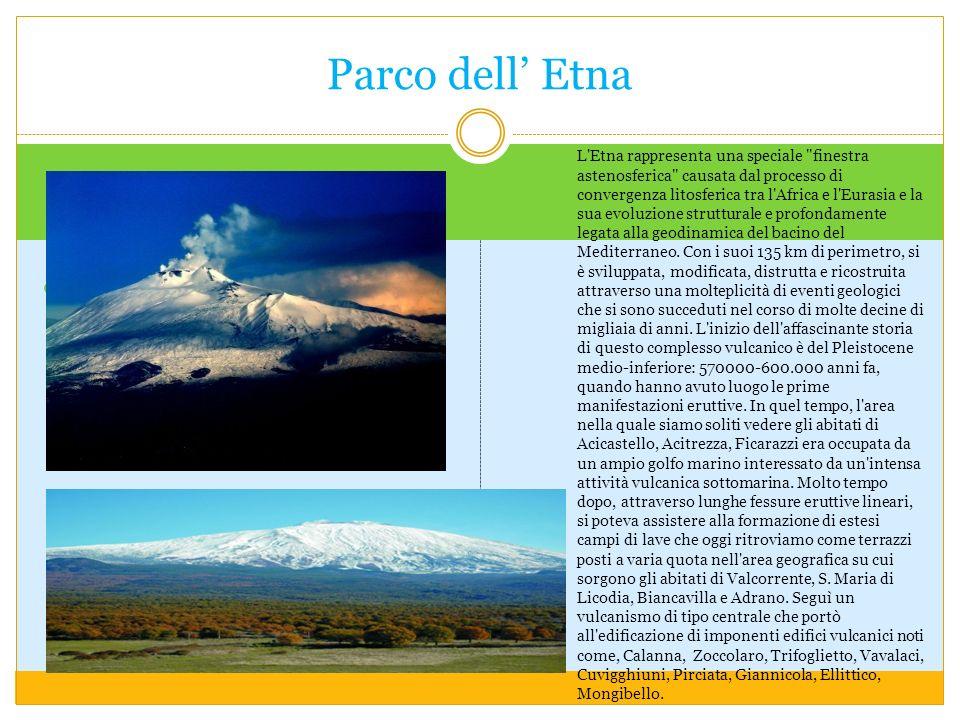 L Etna rappresenta una speciale finestra astenosferica causata dal processo di convergenza litosferica tra l Africa e l Eurasia e la sua evoluzione strutturale e profondamente legata alla geodinamica del bacino del Mediterraneo.