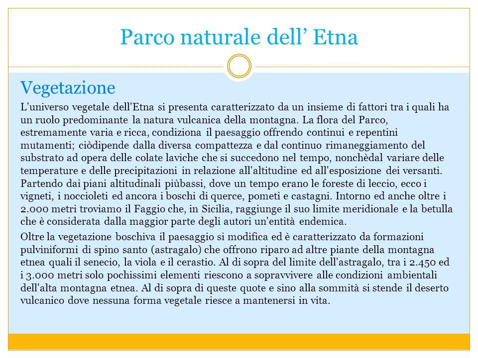 Parco naturale dell Etna Vegetazione L universo vegetale dell Etna si presenta caratterizzato da un insieme di fattori tra i quali ha un ruolo predominante la natura vulcanica della montagna.