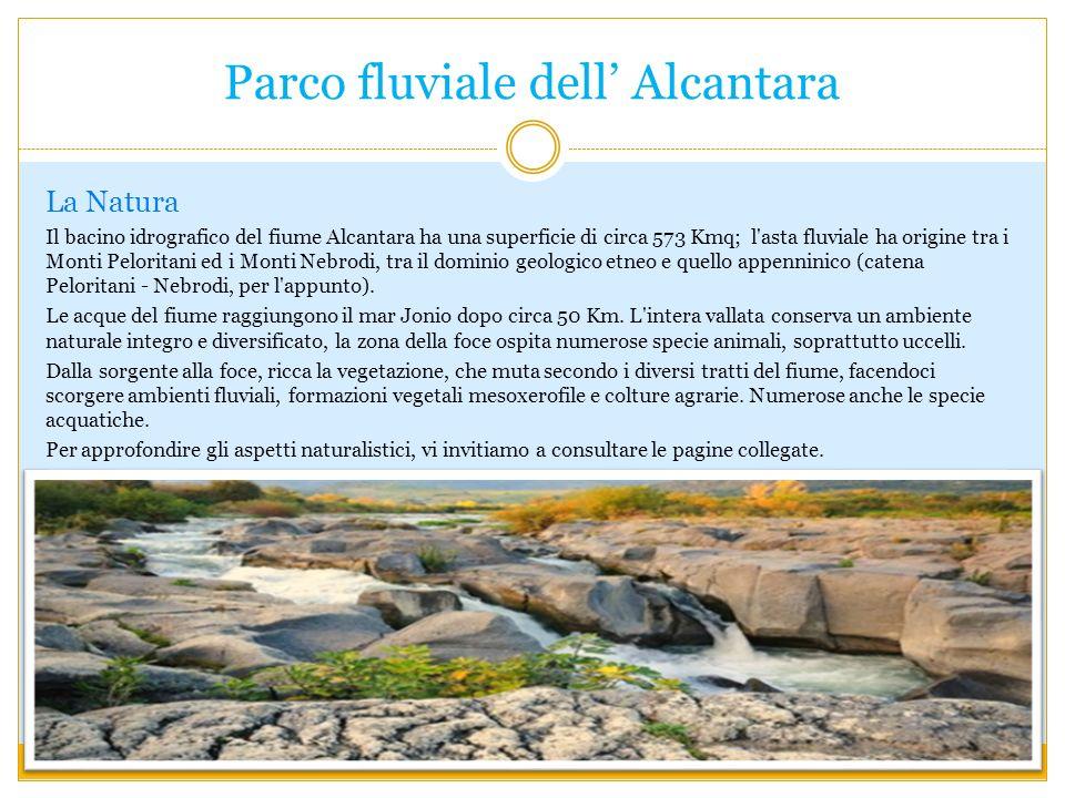 Parco fluviale dell Alcantara La Natura Il bacino idrografico del fiume Alcantara ha una superficie di circa 573 Kmq; l asta fluviale ha origine tra i Monti Peloritani ed i Monti Nebrodi, tra il dominio geologico etneo e quello appenninico (catena Peloritani - Nebrodi, per l appunto).