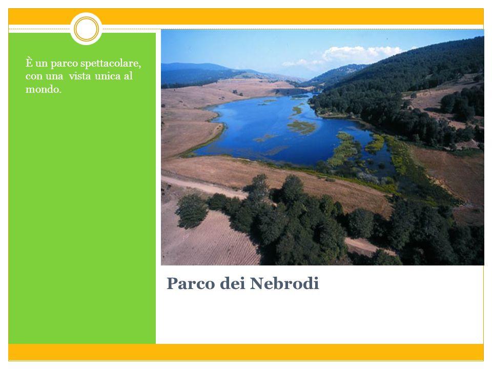 Parco dei Nebrodi È un parco spettacolare, con una vista unica al mondo.