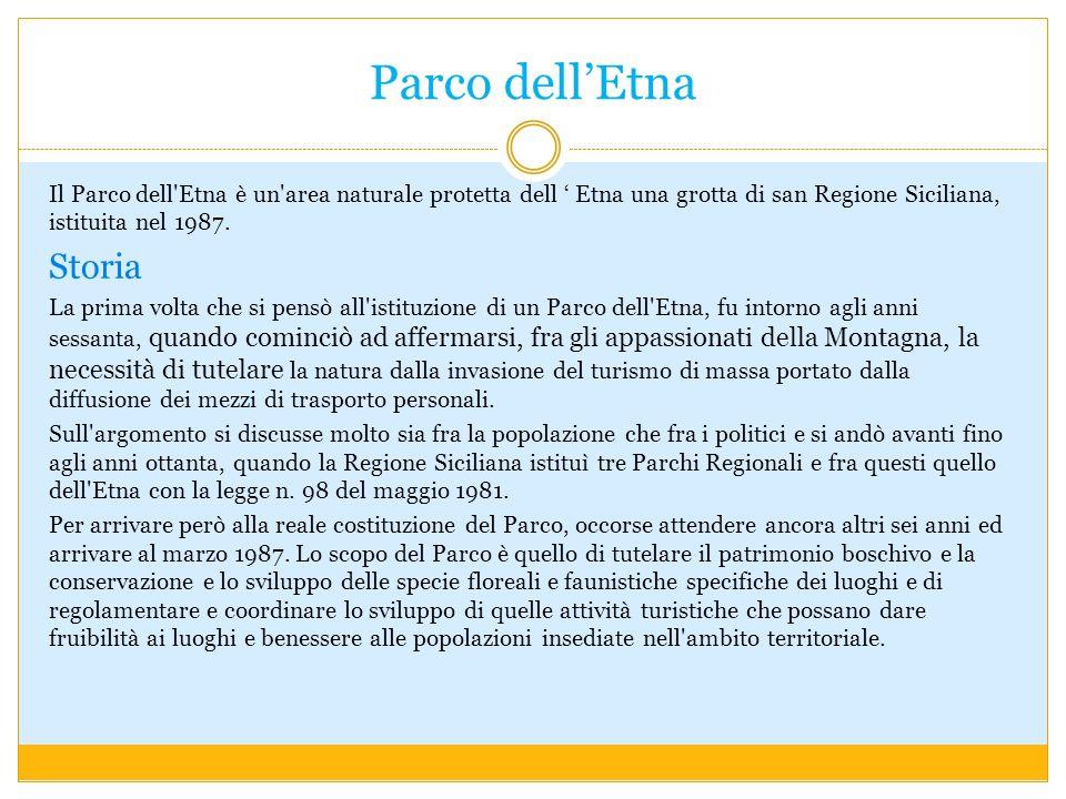 Parco dellEtna Il Parco dell'Etna è un'area naturale protetta dell Etna una grotta di san Regione Siciliana, istituita nel 1987. Storia La prima volta