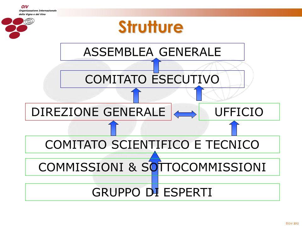 OIV 2012 Strutture ASSEMBLEA GENERALE COMITATO ESECUTIVO COMITATO SCIENTIFICO E TECNICO GRUPPO DI ESPERTI COMMISSIONI & SOTTOCOMMISSIONI UFFICIODIREZI