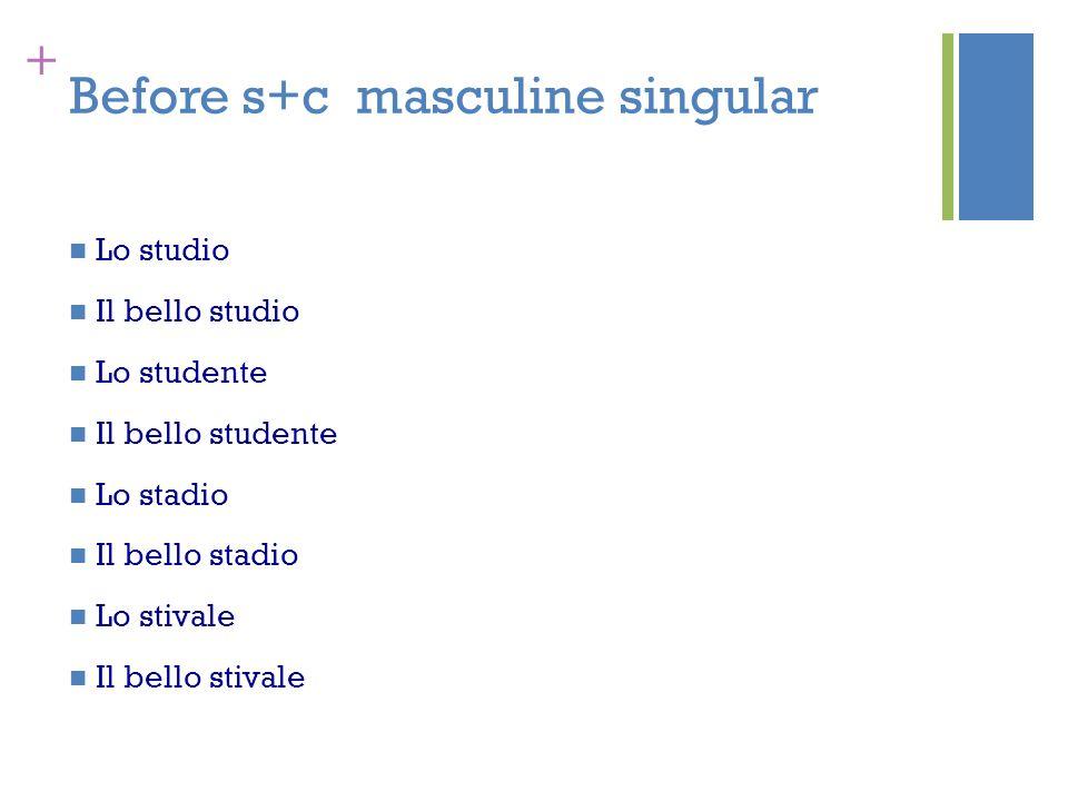 + Before s+c masculine singular Lo studio Il bello studio Lo studente Il bello studente Lo stadio Il bello stadio Lo stivale Il bello stivale