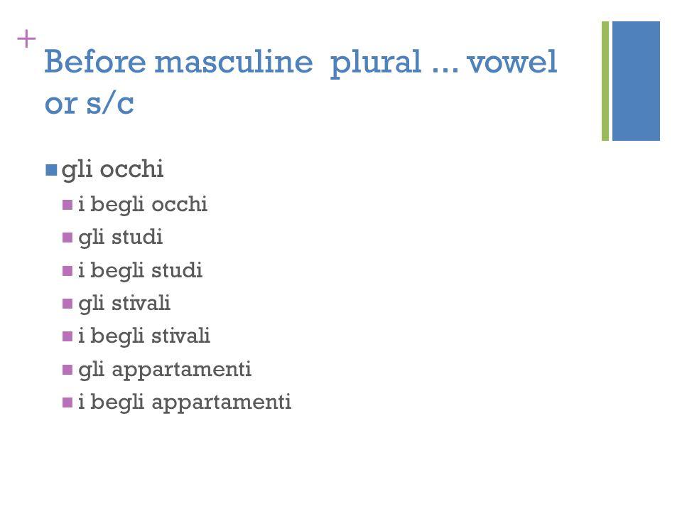 + Before masculine plural... vowel or s/c gli occhi i begli occhi gli studi i begli studi gli stivali i begli stivali gli appartamenti i begli apparta