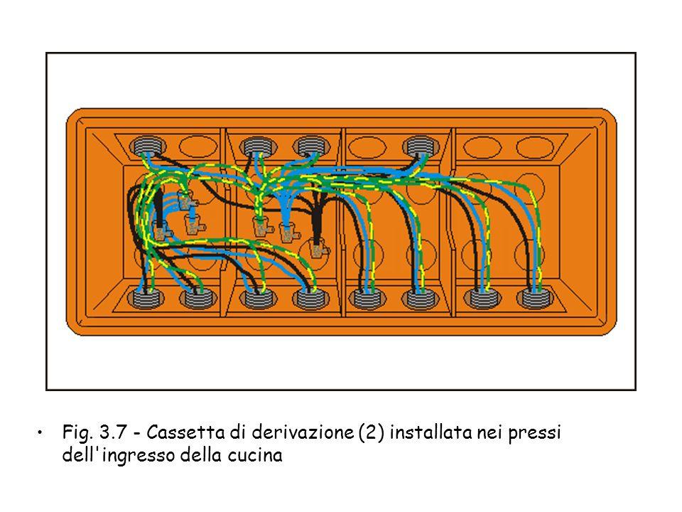 Fig. 3.6 - Cassetta di derivazione (1) installata nei pressi dell'ingresso principale