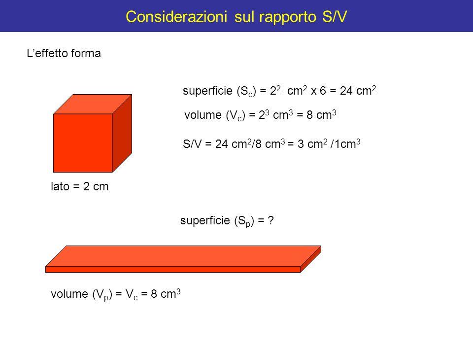 Considerazioni sul rapporto S/V Leffetto forma lato = 2 cm superficie (S c ) = 2 2 cm 2 x 6 = 24 cm 2 volume (V c ) = 2 3 cm 3 = 8 cm 3 volume (V p )
