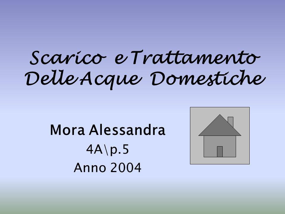 Scarico e Trattamento Delle Acque Domestiche Mora Alessandra 4A\p.5 Anno 2004