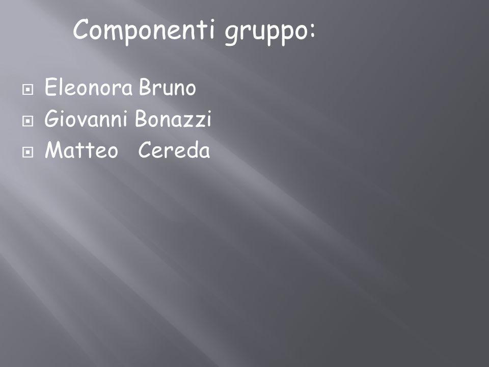 Eleonora Bruno Giovanni Bonazzi Matteo Cereda Componenti gruppo: