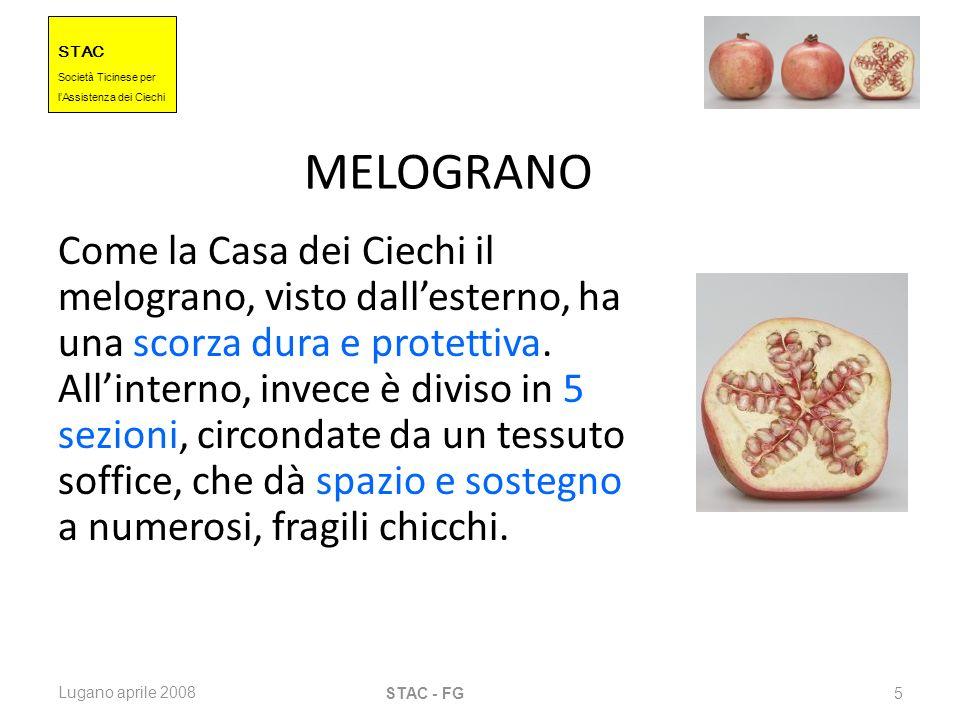 STAC Societ à Ticinese per l Assistenza dei Ciechi Lugano aprile 2008 STAC - FG 5 MELOGRANO Come la Casa dei Ciechi il melograno, visto dallesterno, h
