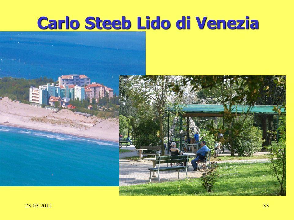 23.03.201233 Carlo Steeb Lido di Venezia