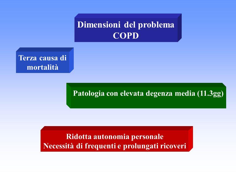 Dimensioni del problema COPD Terza causa di mortalità Patologia con elevata degenza media (11.3gg) Ridotta autonomia personale Necessità di frequenti