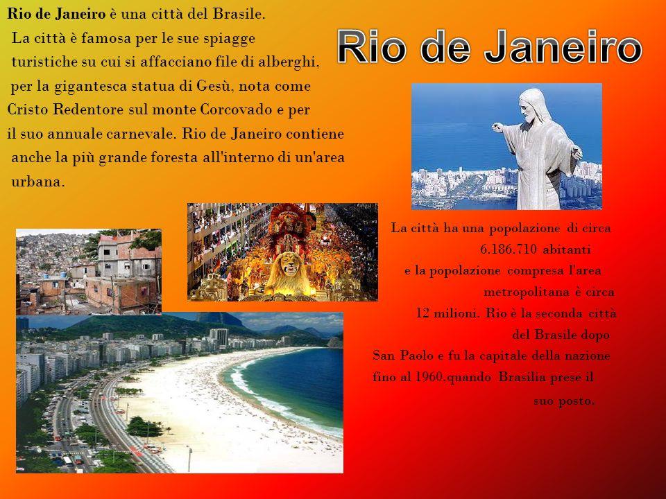 Rio de Janeiro è una città del Brasile. La città è famosa per le sue spiagge turistiche su cui si affacciano file di alberghi, per la gigantesca statu