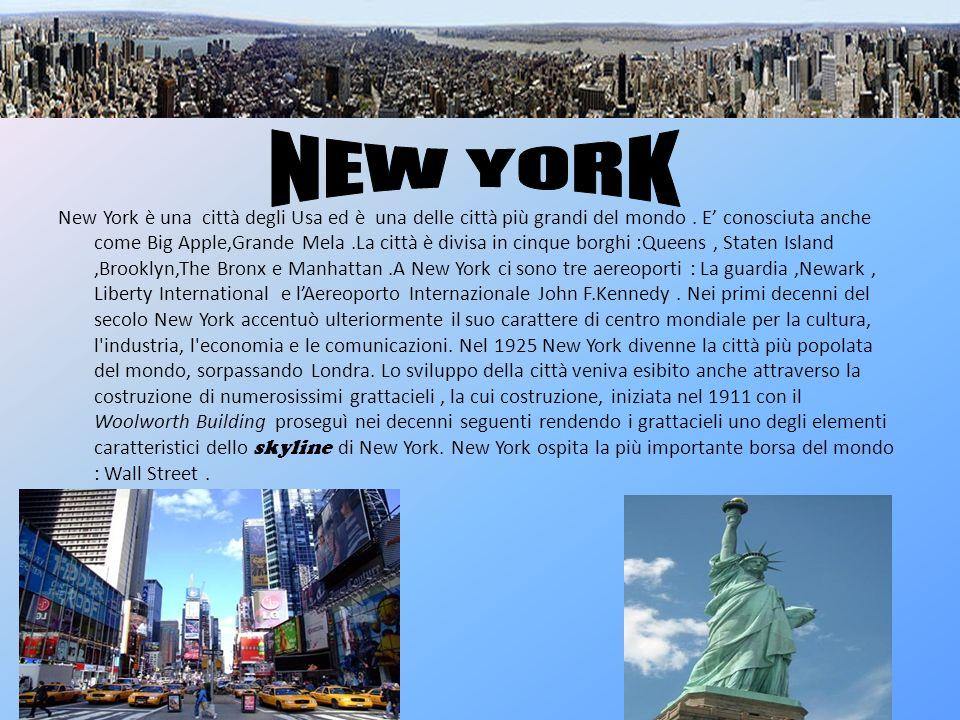 New York è una città degli Usa ed è una delle città più grandi del mondo. E conosciuta anche come Big Apple,Grande Mela.La città è divisa in cinque bo
