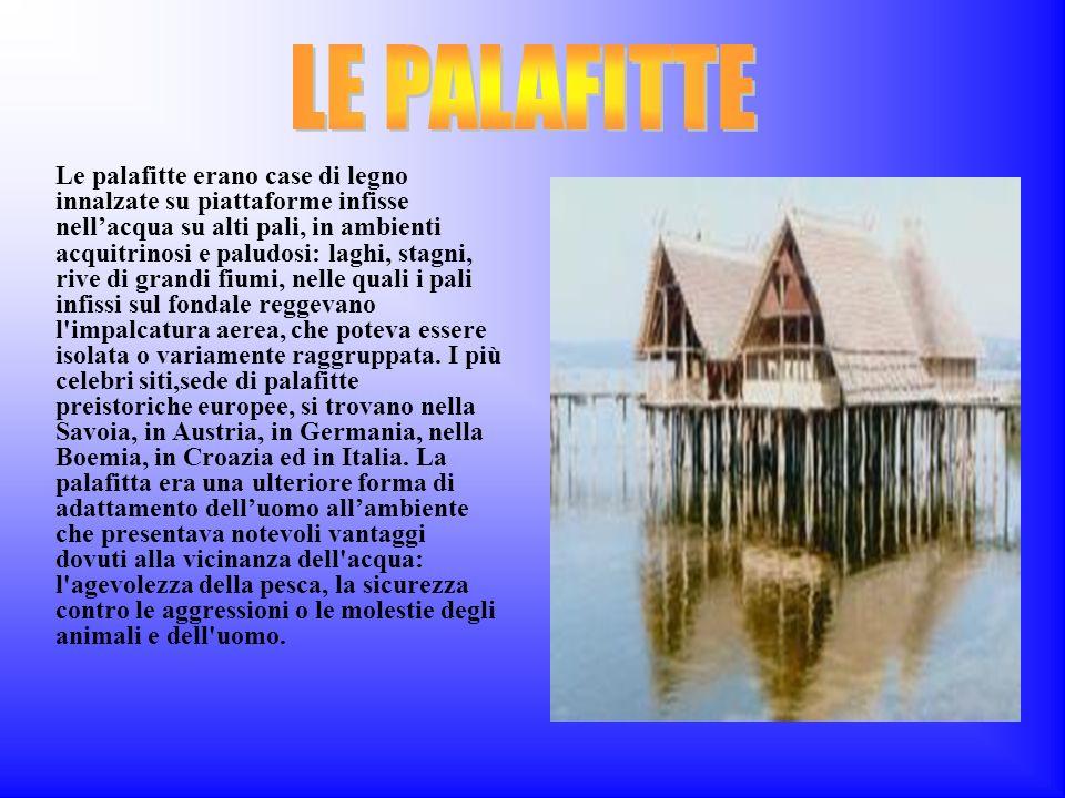 Le palafitte erano case di legno innalzate su piattaforme infisse nellacqua su alti pali, in ambienti acquitrinosi e paludosi: laghi, stagni, rive di