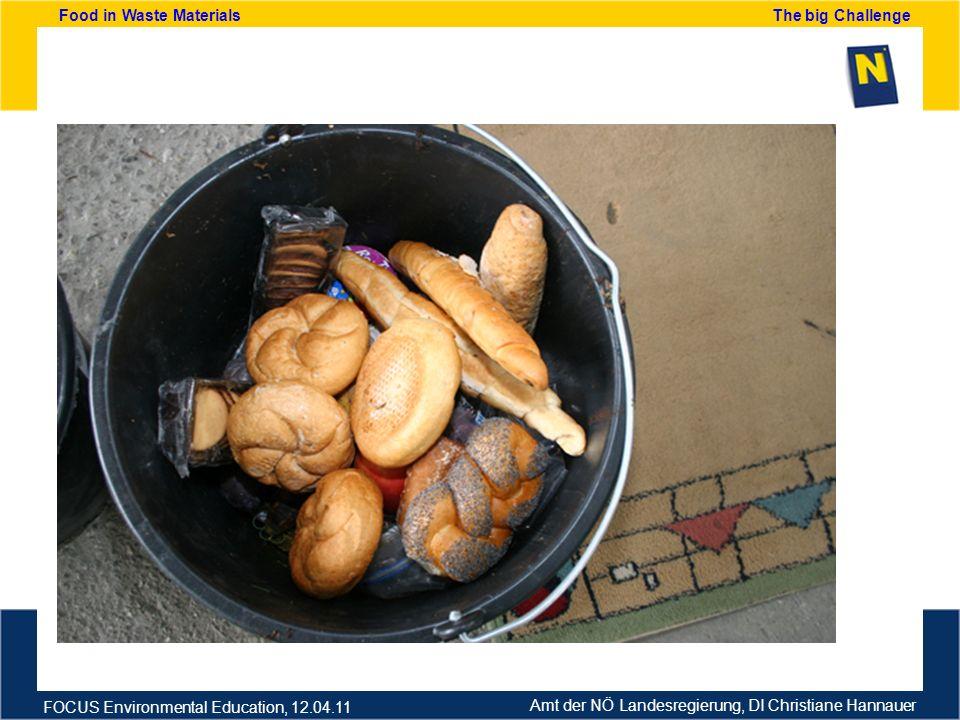 Amt der NÖ Landesregierung, DI Christiane Hannauer FOCUS Environmental Education, 12.04.11 Food in Waste Materials The big Challenge Analisi dei rifiuti