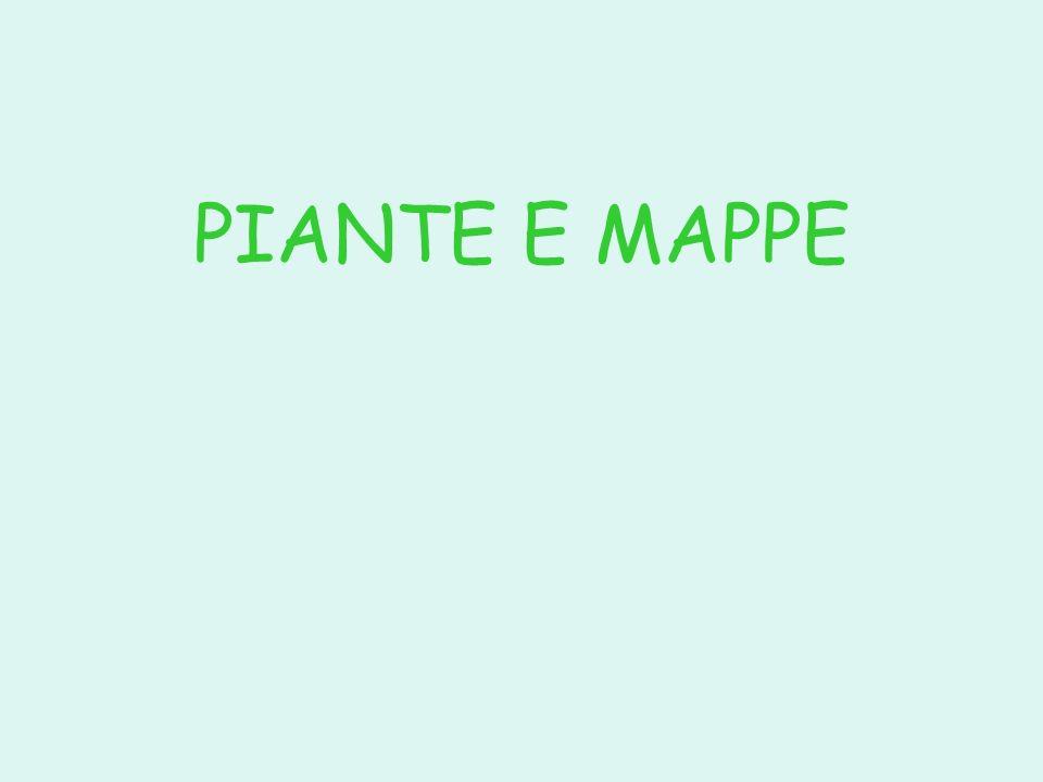 PIANTE E MAPPE