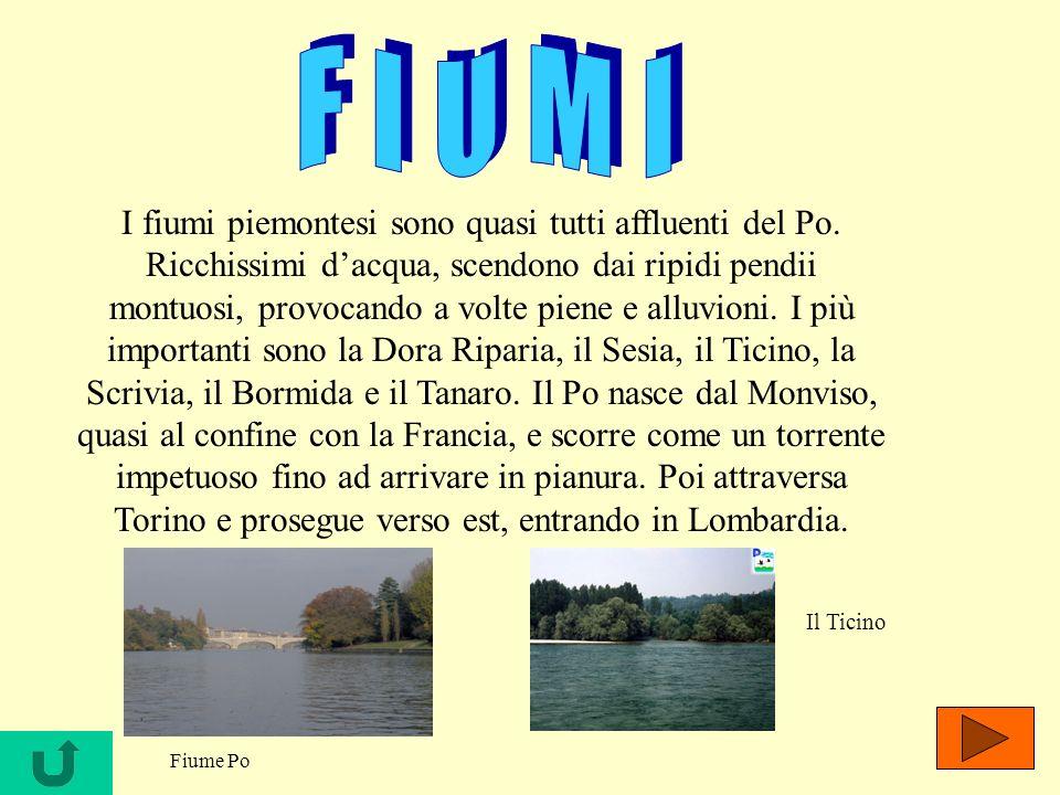I fiumi piemontesi sono quasi tutti affluenti del Po. Ricchissimi dacqua, scendono dai ripidi pendii montuosi, provocando a volte piene e alluvioni. I