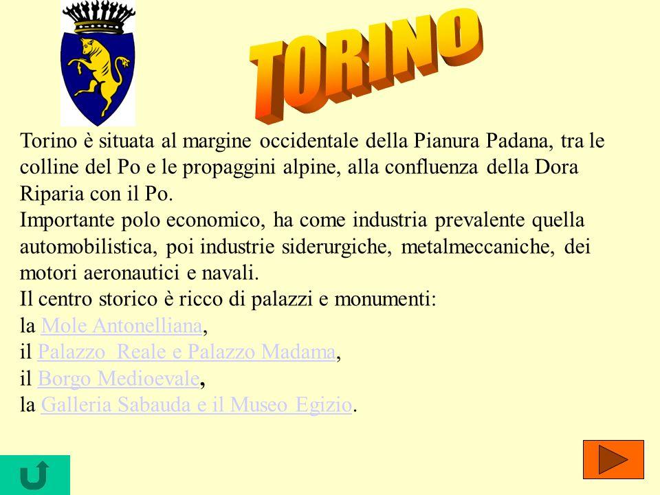 Torino è situata al margine occidentale della Pianura Padana, tra le colline del Po e le propaggini alpine, alla confluenza della Dora Riparia con il