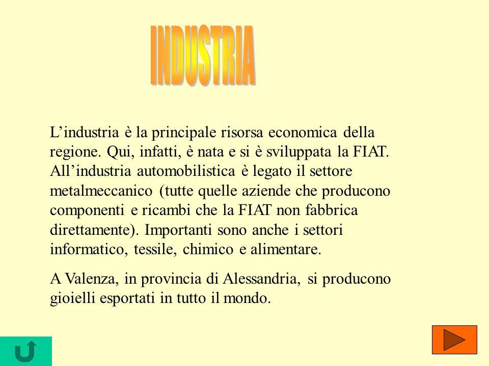 Lindustria è la principale risorsa economica della regione. Qui, infatti, è nata e si è sviluppata la FIAT. Allindustria automobilistica è legato il s