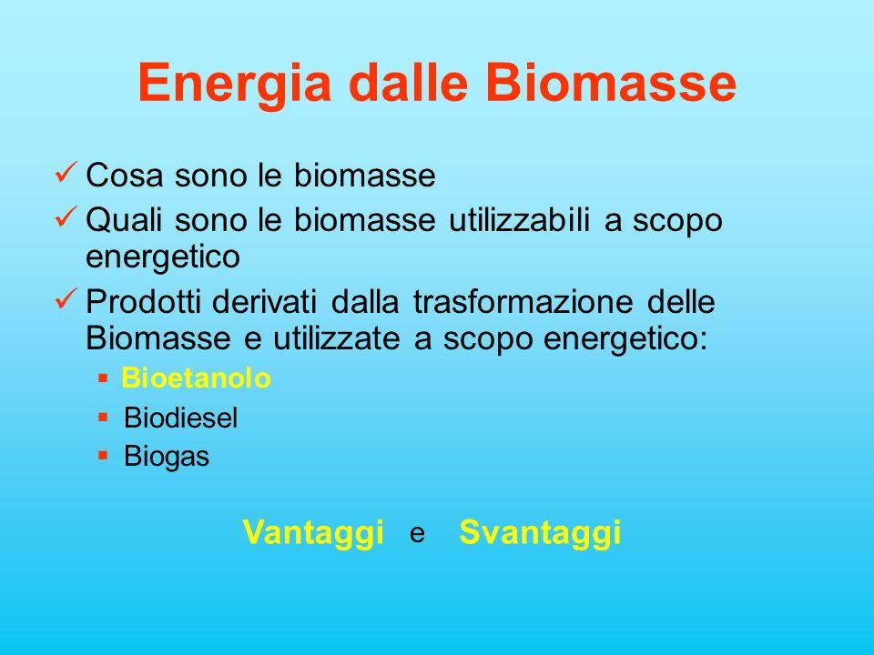 Energia dalle Biomasse Cosa sono le biomasse Quali sono le biomasse utilizzabili a scopo energetico Prodotti derivati dalla trasformazione delle Bioma