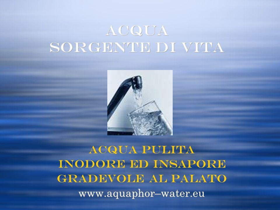 ACQUA SORGENTE di Vita Acqua Pulita inodore ed insapore Gradevole al palato www.aquaphor–water.eu Acqua Pulita inodore ed insapore Gradevole al palato