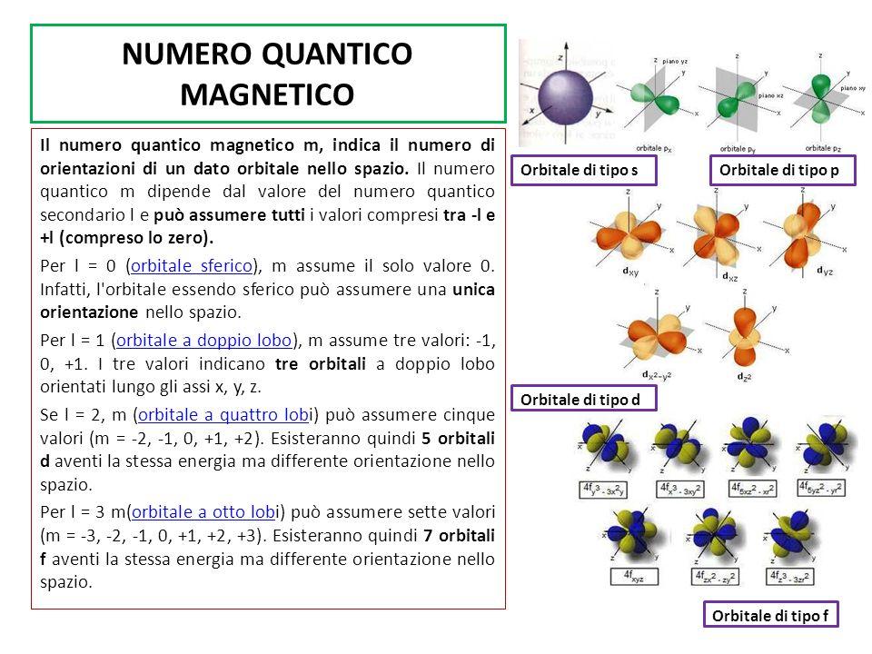 NUMERO QUANTICO MAGNETICO Il numero quantico magnetico m, indica il numero di orientazioni di un dato orbitale nello spazio.