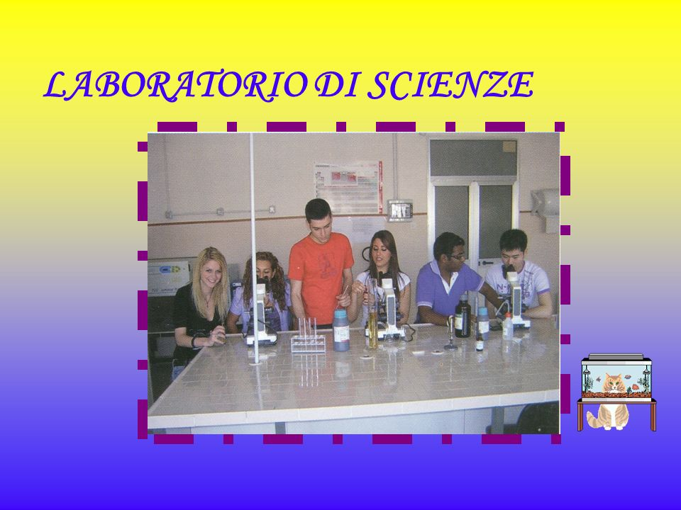 LICEO DELLE SCIENZE UMANE N.B.