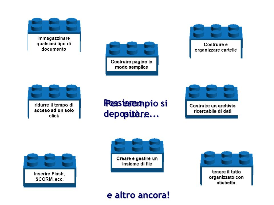Cartelle Files Links Pagine Web LMS Database Etichette Portfolio* Possiamo depositare...