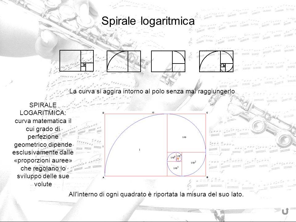 Spirale logaritmica La curva si aggira intorno al polo senza mai raggiungerlo All'interno di ogni quadrato è riportata la misura del suo lato. SPIRALE