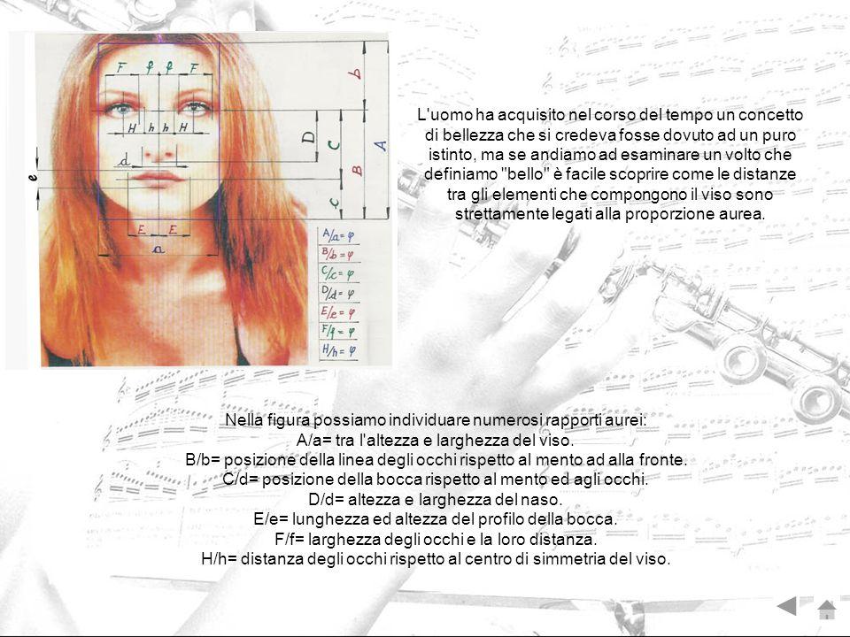 Nella figura possiamo individuare numerosi rapporti aurei: A/a= tra l'altezza e larghezza del viso. B/b= posizione della linea degli occhi rispetto al