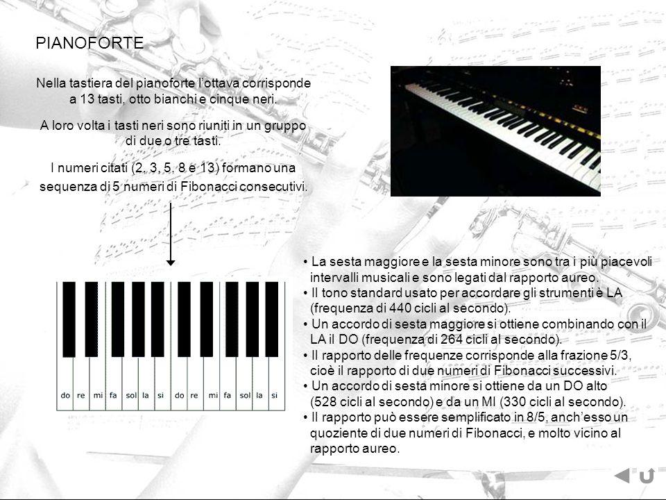 PIANOFORTE Nella tastiera del pianoforte lottava corrisponde a 13 tasti, otto bianchi e cinque neri. A loro volta i tasti neri sono riuniti in un grup