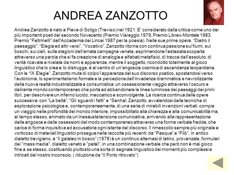 ANDREA ZANZOTTO Andrea Zanzotto è nato a Pieve di Soligo (Treviso) nel 1921. E considerato dalla critica come uno dei più importanti poeti del secondo