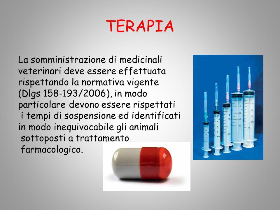 TERAPIA La somministrazione di medicinali veterinari deve essere effettuata rispettando la normativa vigente (Dlgs 158-193/2006), in modo particolare