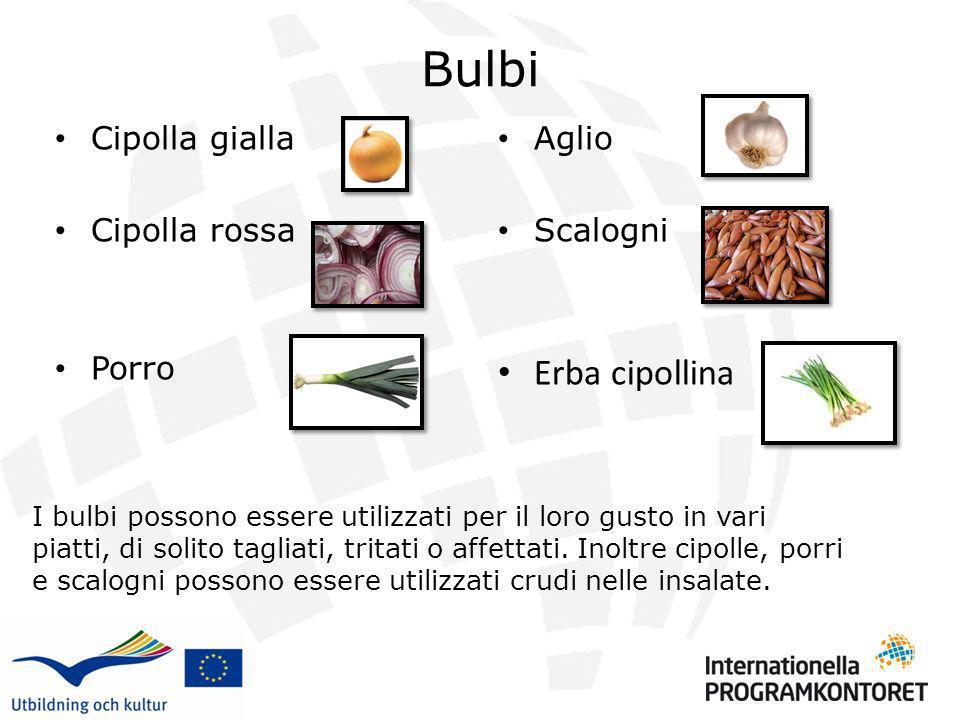 Bulbi Cipolla gialla Cipolla rossa Porro Aglio Scalogni Erba cipollina I bulbi possono essere utilizzati per il loro gusto in vari piatti, di solito t