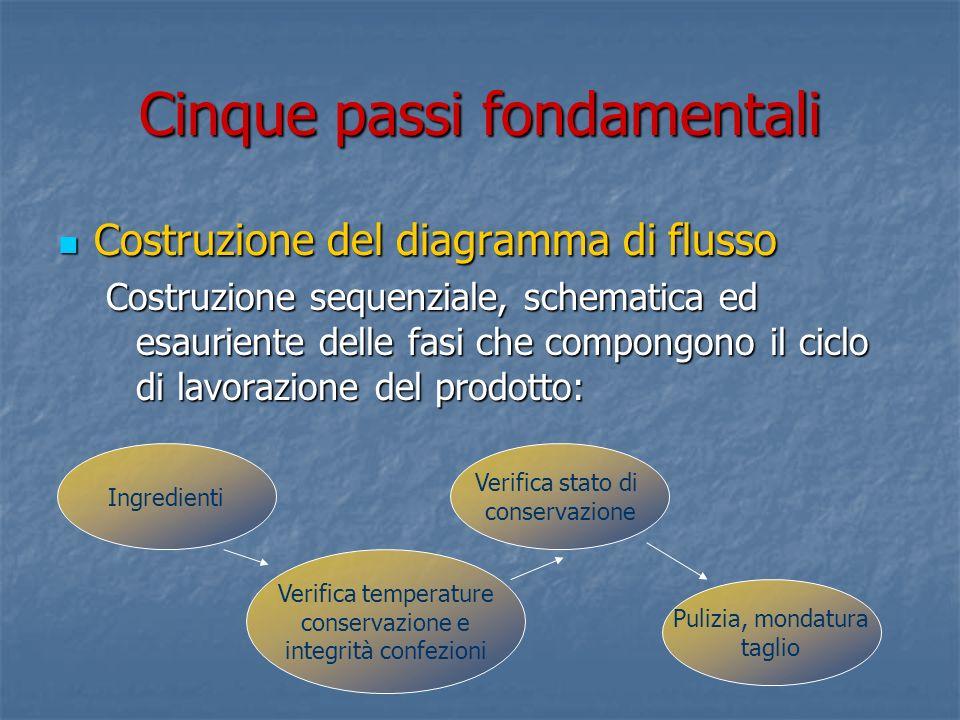 Cinque passi fondamentali Conferma in azienda del diagramma di flusso Conferma in azienda del diagramma di flusso I diagrammi di flusso, elaborati a tavolino, dovranno essere confermati con losservazione della realtà produttiva