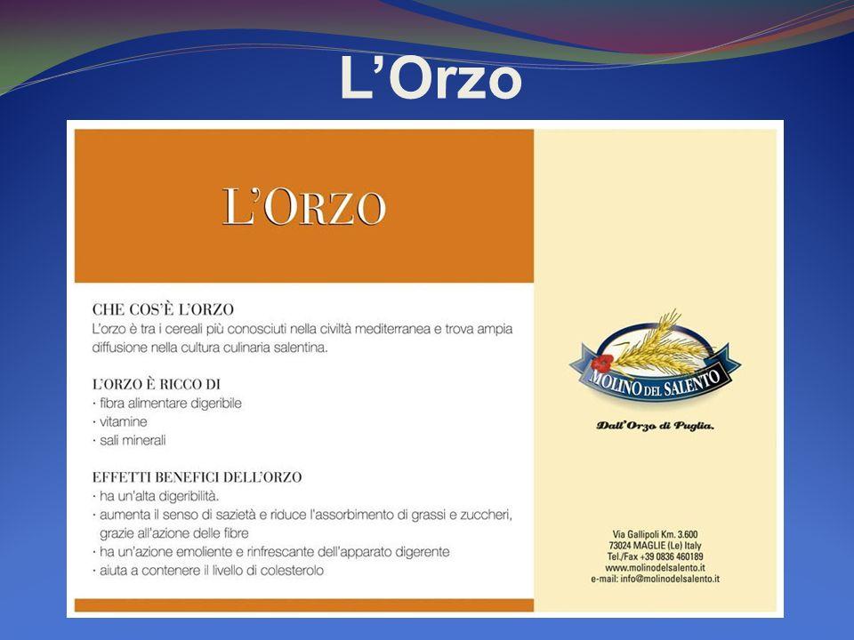 LOrzo