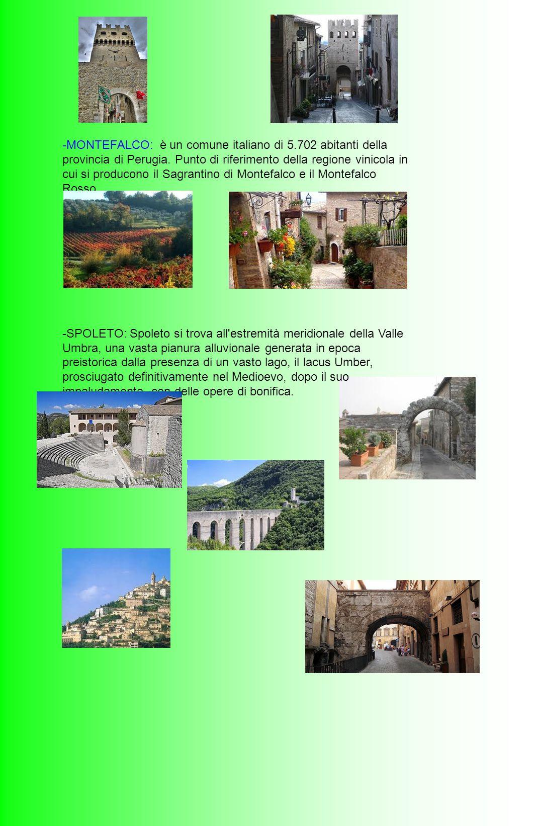 -MONTEFALCO: è un comune italiano di 5.702 abitanti della provincia di Perugia. Punto di riferimento della regione vinicola in cui si producono il Sag