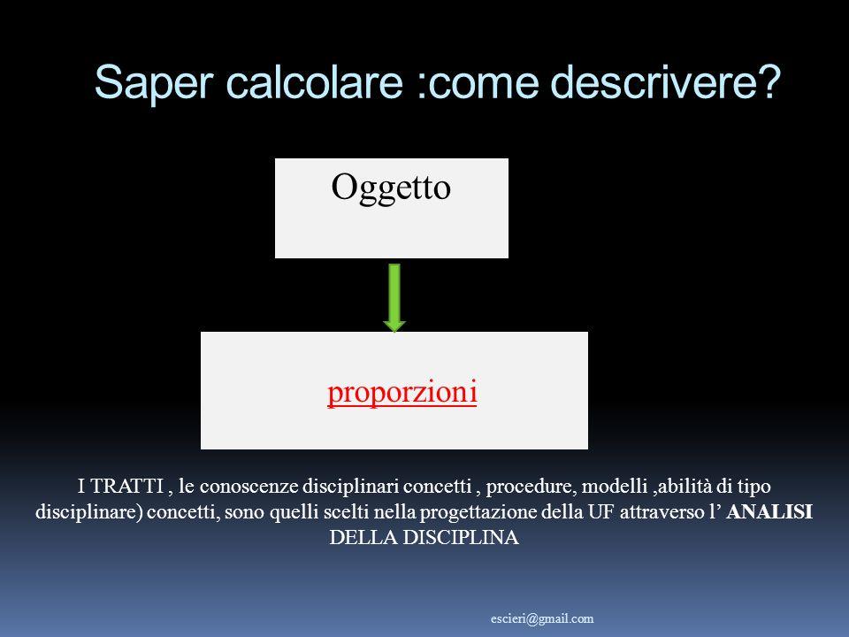 proporzioni I TRATTI, le conoscenze disciplinari concetti, procedure, modelli,abilità di tipo disciplinare) concetti, sono quelli scelti nella progett