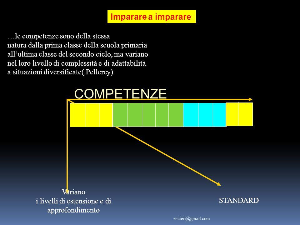 Imparare a imparare Variano i livelli di estensione e di approfondimento escieri@gmail.com STANDARD …le competenze sono della stessa natura dalla prim