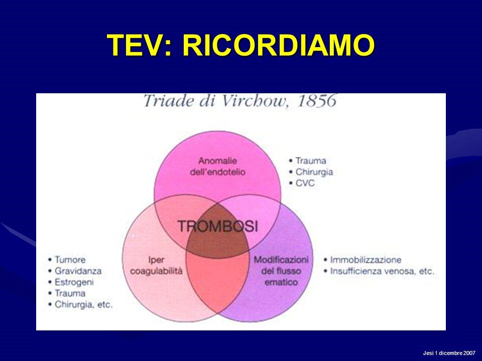 Jesi 1 dicembre 2007 TEV: RICORDIAMO