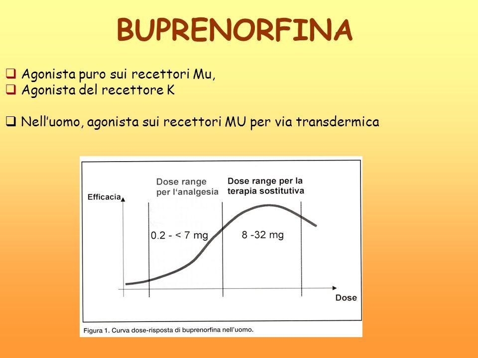 BUPRENORFINA Agonista puro sui recettori Mu, Agonista del recettore K Nelluomo, agonista sui recettori MU per via transdermica