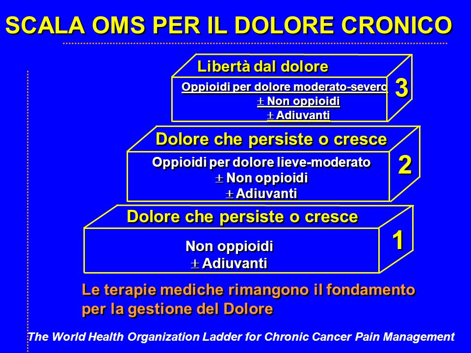 SCALA OMS PER IL DOLORE CRONICO Libertà dal dolore Oppioidi per dolore moderato-severo Non oppioidi Adiuvanti Oppioidi per dolore moderato-severo Non oppioidi Adiuvanti Oppioidi per dolore lieve-moderato Non oppioidi Adiuvanti Oppioidi per dolore lieve-moderato Non oppioidi Adiuvanti Dolore che persiste o cresce Non oppioidi Adiuvanti Non oppioidi Adiuvanti Le terapie mediche rimangono il fondamento per la gestione del Dolore Le terapie mediche rimangono il fondamento per la gestione del Dolore 3 3 2 2 1 1 The World Health Organization Ladder for Chronic Cancer Pain Management