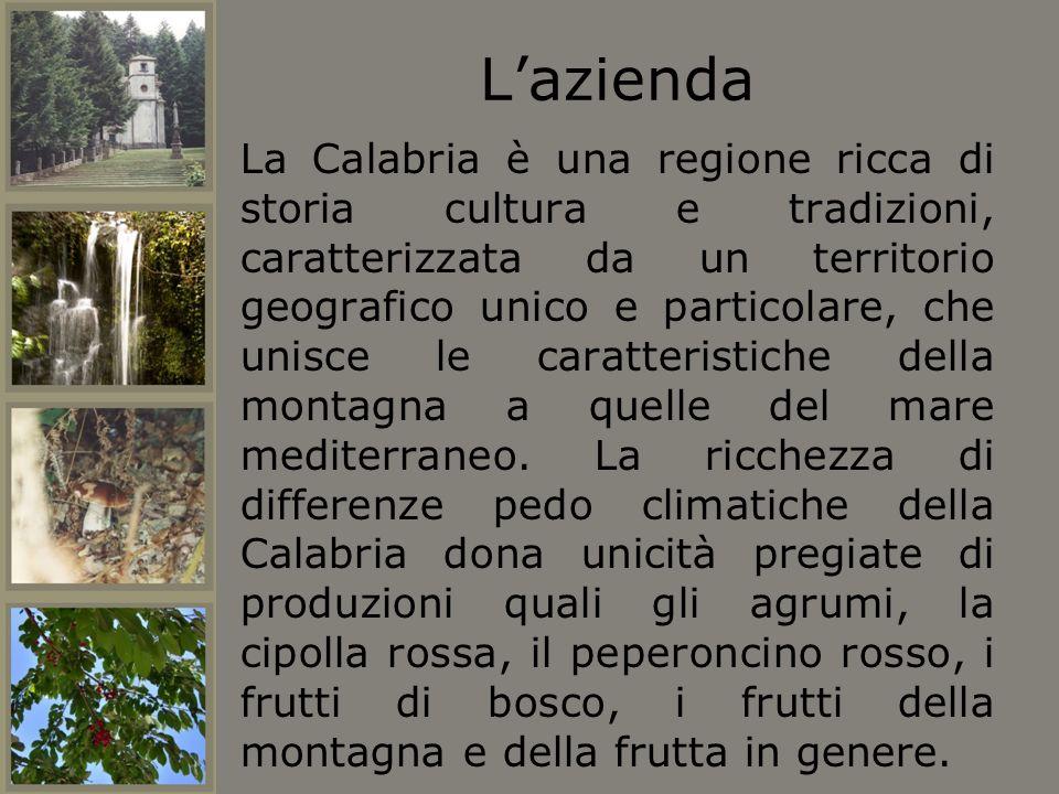 Lazienda La Calabria è una regione ricca di storia cultura e tradizioni, caratterizzata da un territorio geografico unico e particolare, che unisce le